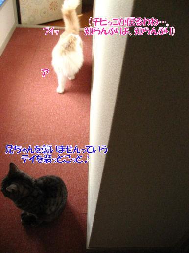 13-2チビッ子無視.JPG