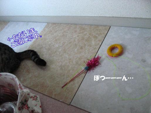 16‐3ぽつーん.JPG