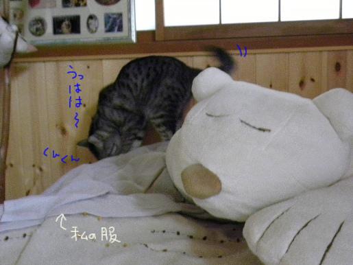 22-2 3日目の朝.JPG