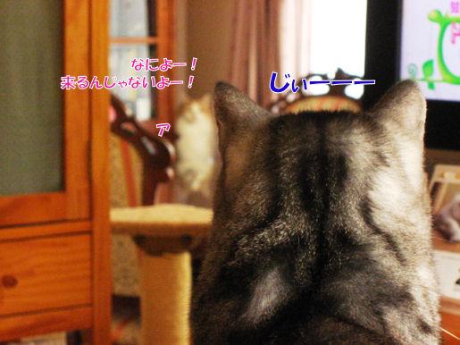 7-6来るな!.JPG