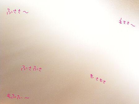 アルルのモフモフしっぽ.JPG