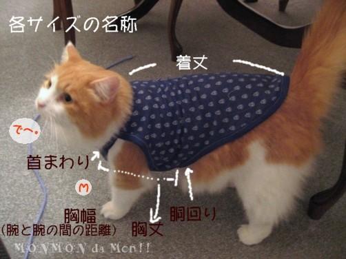コピー ~ なんか…金太郎の前掛けみたい….JPG