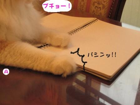 コピー ~ IMG_1061.JPG