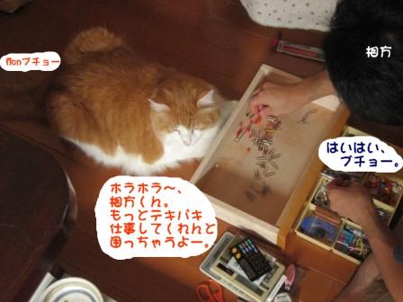 コピー ~ IMG_1108.JPG