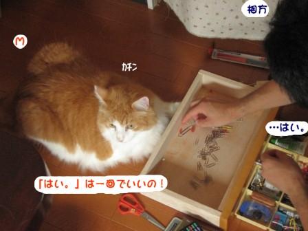 コピー ~ IMG_1112.JPG
