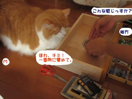 コピー ~ IMG_1114.JPG