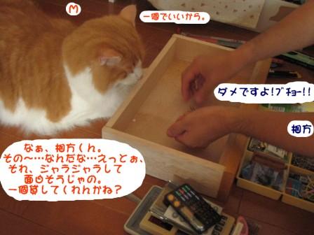 コピー ~ IMG_1116.JPG