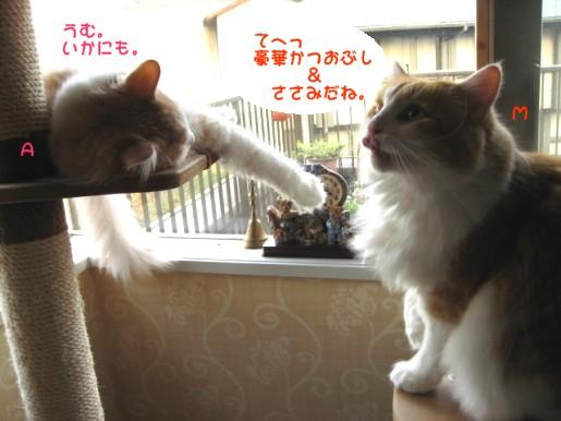コピー ~ IMG_1122.JPG