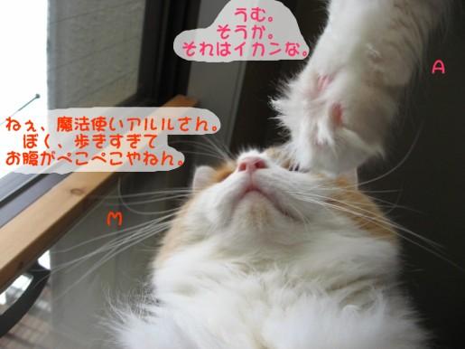 コピー ~ IMG_1130.JPG
