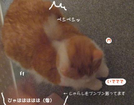 コピー ~ IMG_1237.JPG