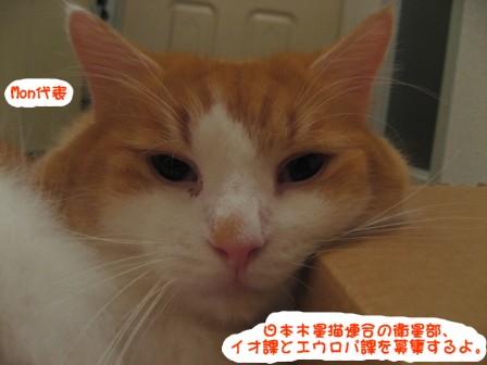 コピー ~ IMG_2279.JPG