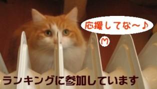 コピー ~ IMG_4090.JPG