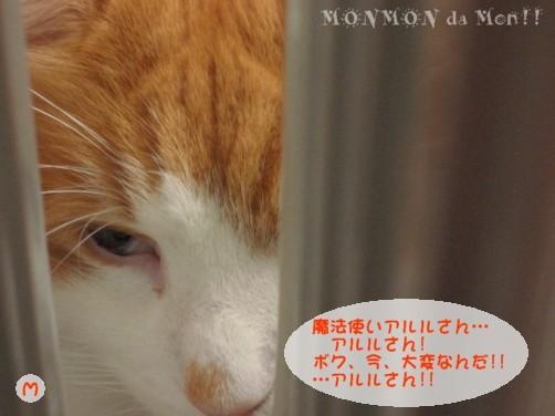コピー ~ IMG_4111.JPG