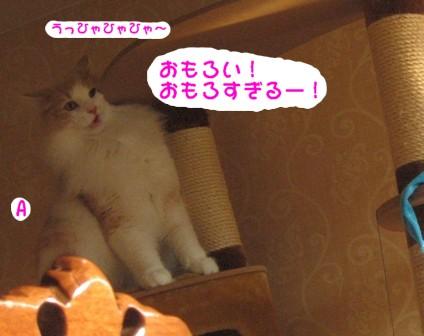 コピー ~ IMG_9265.JPG