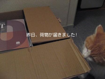 コピー ~ IMG_9926.JPG