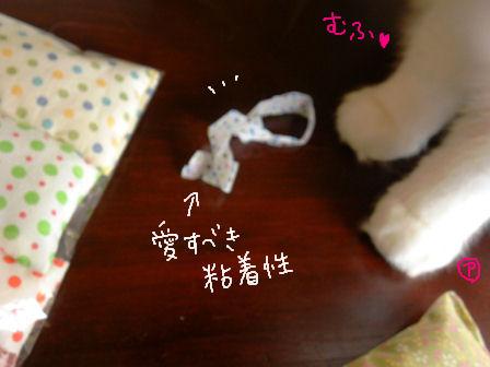 マニアックアルル.JPG