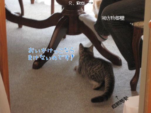 反撃.JPG