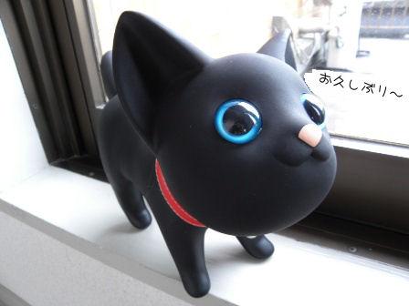 黒猫さん.JPG