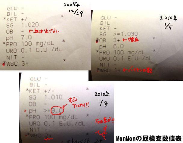 Monちゃんの尿検査数値表.jpg