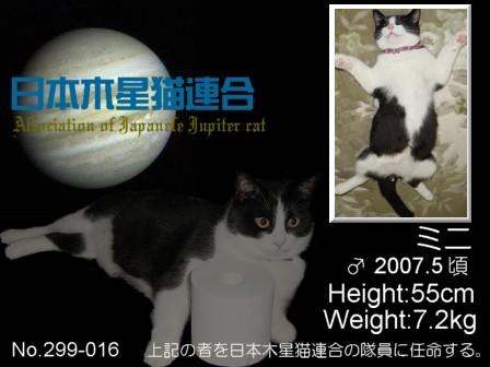 No.16 チャコ&ミニさん ミニさん.jpg