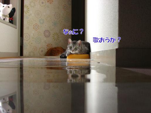114-2歌おうか?.JPG