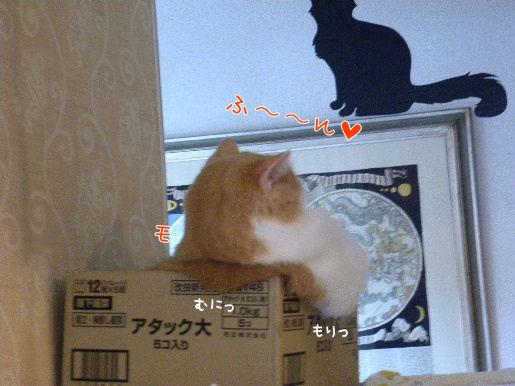 アタック大フロ.JPG