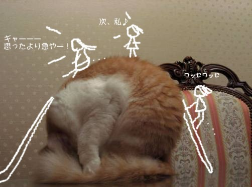 コピー (2) ~ コピー ~ IMG_1503.JPG