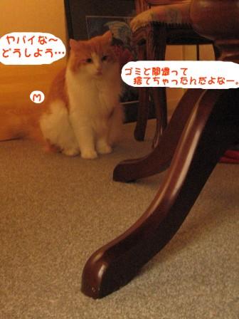 コピー ~ IMG_1038.JPG