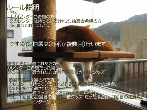 コピー ~ IMG_1622.JPG