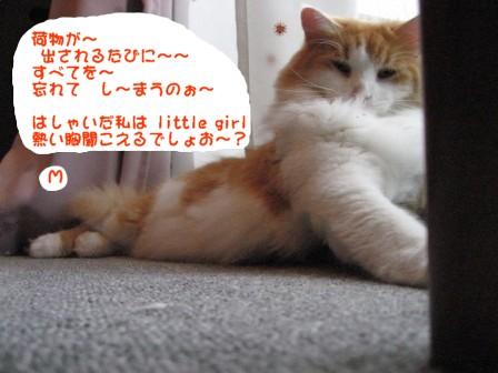 コピー ~ IMG_1820.JPG