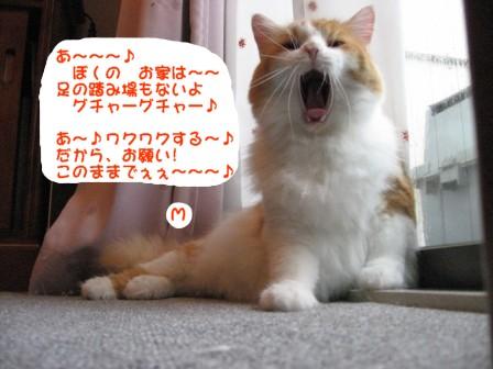 コピー ~ IMG_1830.JPG