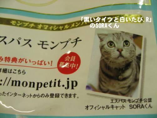 コピー ~ IMG_1857.JPG