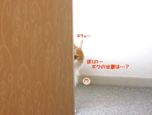コピー ~ IMG_3156.JPG
