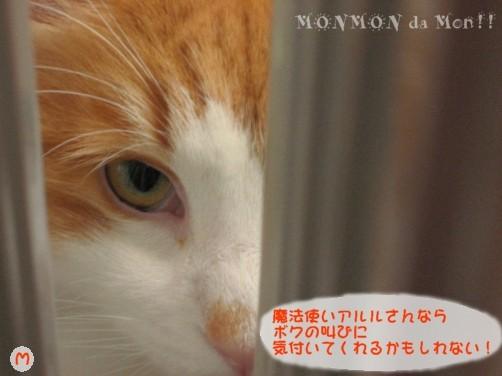 コピー ~ IMG_4108.JPG