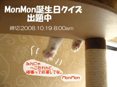 コピー ~ IMG_4897.JPG