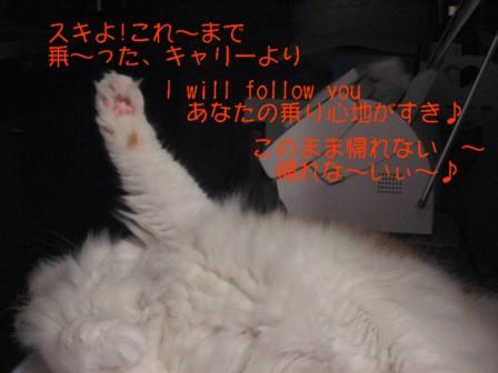コピー ~ IMG_5754.JPG