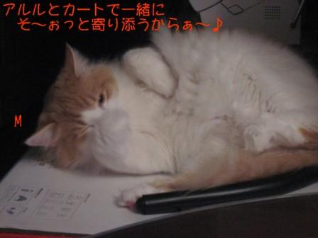 コピー ~ IMG_5758.JPG