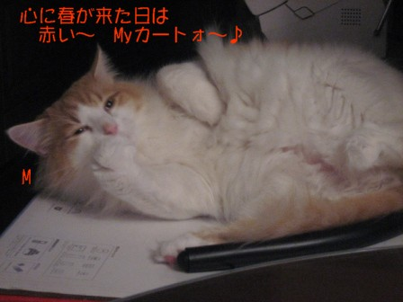 コピー ~ IMG_5761.JPG