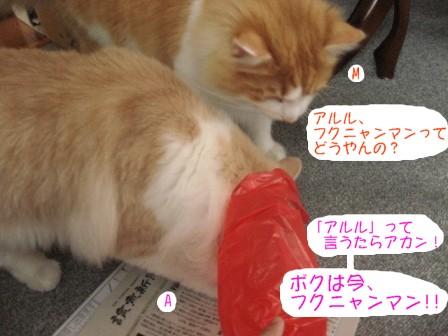 コピー ~ IMG_6952.JPG