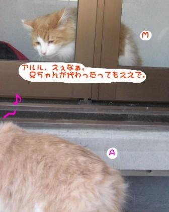 コピー ~ IMG_7885.JPG