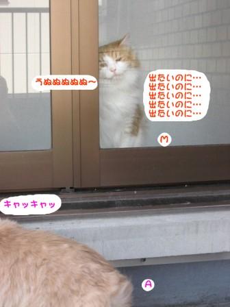 コピー ~ IMG_7887.JPG