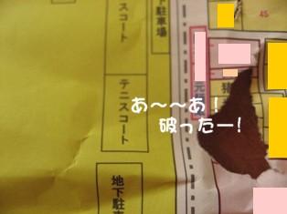 コピー ~ IMG_9254.JPG