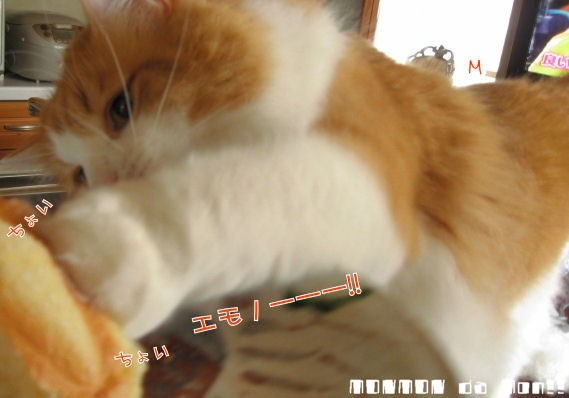 パンを攻撃!!.JPG