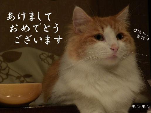 モンモン.JPG