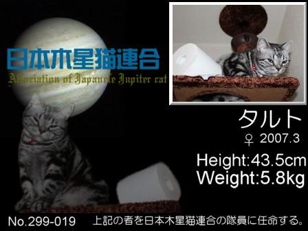 No.19 marimoさん タルトちゃん.jpg