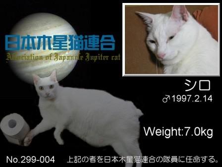 No.4yumenekoさん&シロさん A.jpg